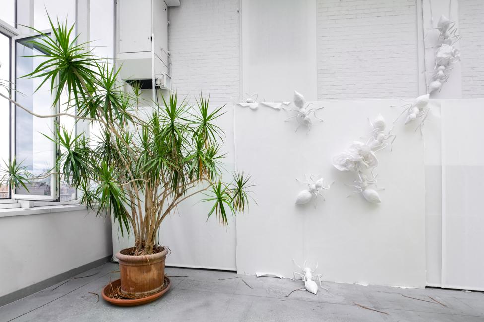 Photographe Architecture de papier